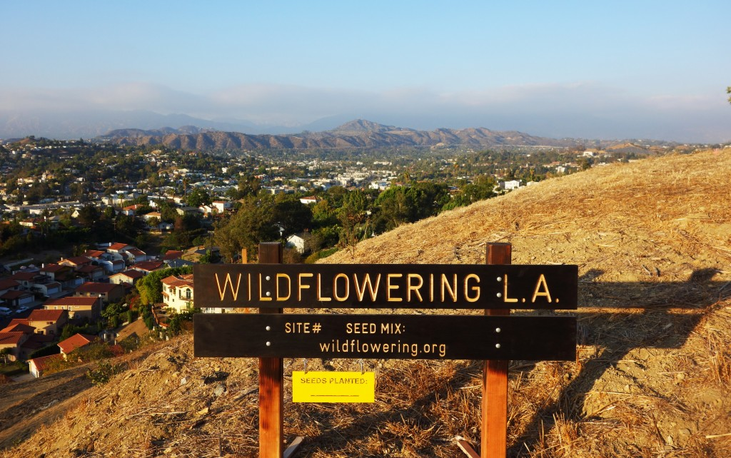 Wildflowering L.A. sign